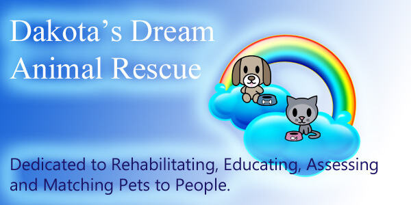 Dakotas Dream Animal Rescue In Winchester Va